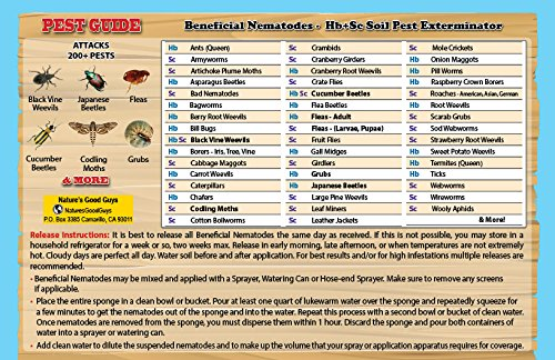 250-Million-Live-Beneficial-Nematodes-Hb-Sc-Kills-Over-200-Different-Species-of-Soil-Dwelling-and-Wood-Boring-Insects-0-0