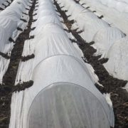 Agfabric-055-Oz-6×250-Low-Tunnel-Kits-Row-Cover-Roll-with-Hoops-0-1