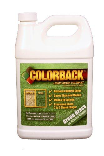 COLORBACK-4800-Sq-Ft-Mulch-Color-Concentrate-1-Gallon-Green-Grass-0