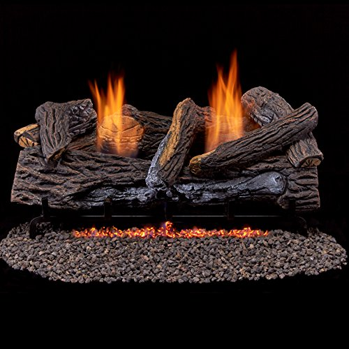 Duluth-Forge-Vent-Free-Dual-Fuel-Gas-Log-Set-24-in-Berkshire-Stacked-Oak-Remote-Control-0