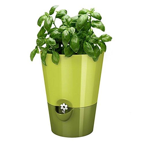 EMSA-Germany-Indoor-Gardening-self-watering-planter-keeping-kitchen-herbs-fresh-healthy-for-weeks-0