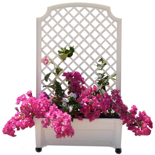 Exaco-1416W-Calypso-Planter-with-Trellis-and-Self-Watering-System-0-0