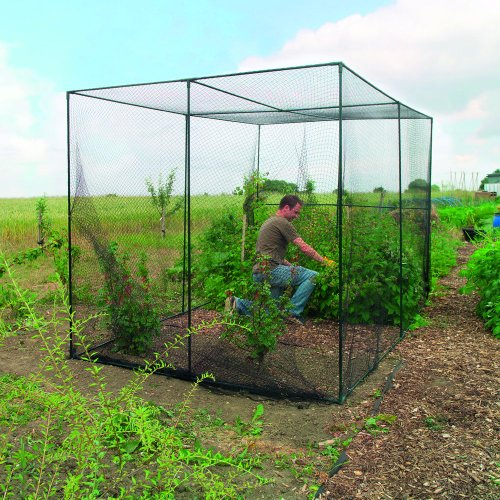 Gardman-7662-Fruit-Cage-Large-118-Long-x-78-Wide-x-78-High-0-0