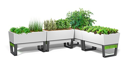 GlowPear-Urban-Garden-Self-Watering-Planter-0-0