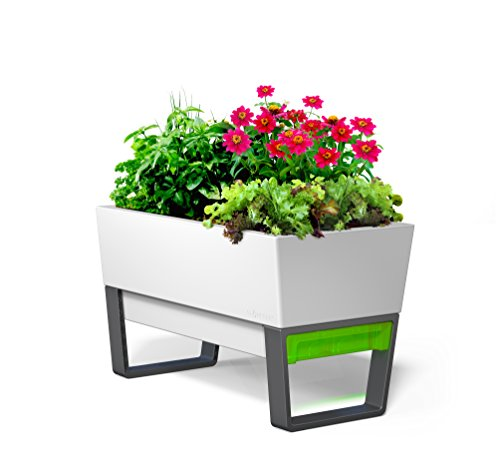 GlowPear-Urban-Garden-Self-Watering-Planter-0