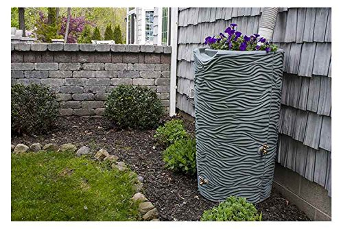 Good-Ideas-Impressions-Palm-Rain-Saver-65-Gallon-0