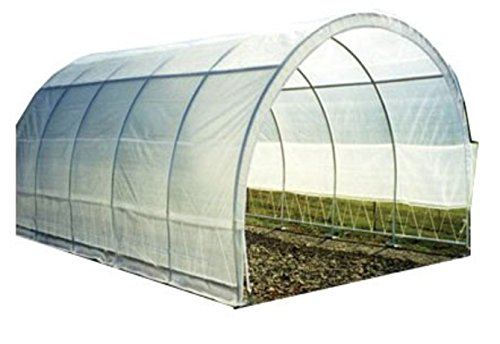 Greenhouse-Clear-Plastic-Film-Polyethylene-Cover-4-Year-6-Mil-12ft-X-25ft-0-1