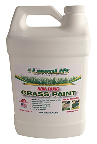 Lawn-Paint-Concentrated-Lawn-Paint-6-Units-1-gallon-0