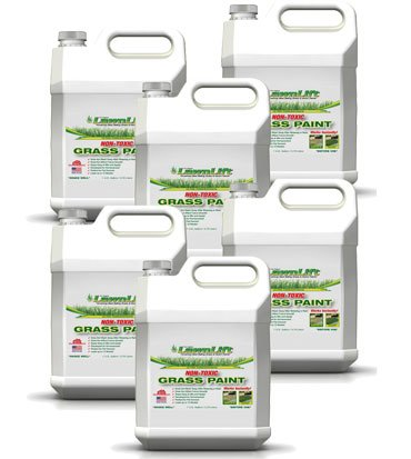 Lawnlift-Ultra-Concentrated-Green-Grass-Paint-6-Gallon-Case-66-Gallons-of-Product-covers-24000-sq-feet-0