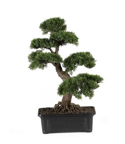 Nearly-Natural-4103-Cedar-Bonsai-Silk-Plant-24-Inch-Green-0
