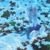Polaris-Vac-Sweep-280-Pressure-Side-Pool-Cleaner-0-0