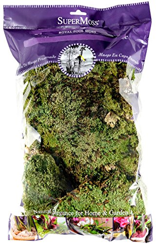 SuperMoss-Royal-Pool-Moss-Preserved-0
