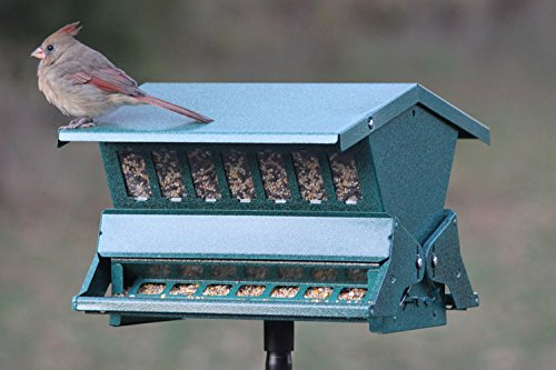 Woodlink-Absolute-II-Squirrel-Resistant-Bird-Feeder-Model-7536-0-1