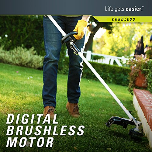 Greenworks-Cordless-String-Trimmer-Battery-and-Charger-Included-0-1