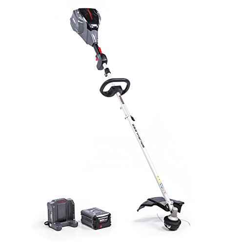 POWERWORKS-ST60L01PW-string-trimmer-0