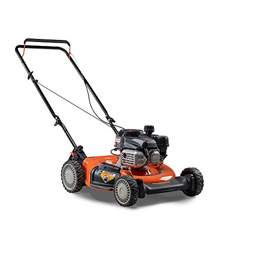 Remington-RM110-Trail-Blazer-132cc-21-Inch-2-in-1-Gas-Push-Lawn-Mower-0-0