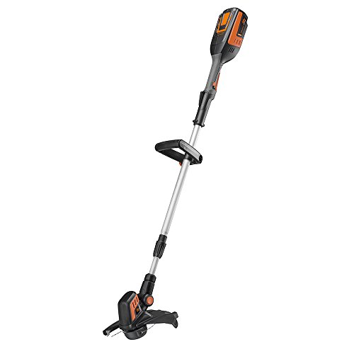 Remington-RM4000-40V-12-Inch-Cordless-Battery-String-Trimmer-and-Edger-0