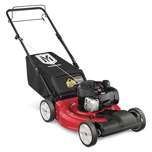 21-in-140-cc-OHV-Briggs-Stratton-Self-Propelled-Walk-Behind-Gas-Lawn-Mower-0