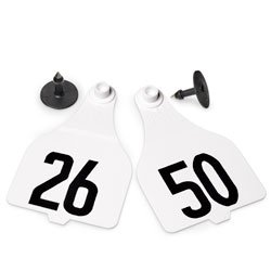 Destron-Fearing-Extra-Large-Numbered-Tags-with-Studs-White-Numbers-26-50-C08002BN-0
