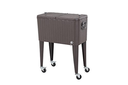 Sunjoy-60-Qt-Cooler-Wicker-Decorative-Pattern-0-1