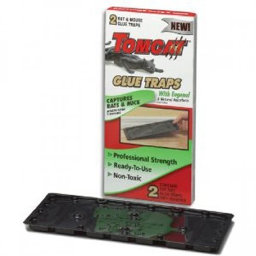 2PK-Rat-Glue-Trap-0