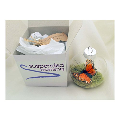 Monarch-Butterfly-Memorial-Christmas-Ornament-Clear-Glass-2-14-wide-0-2
