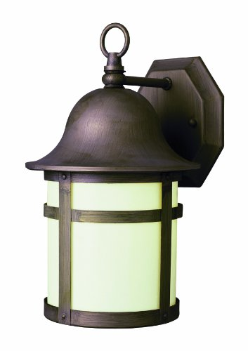 Trans-Globe-Lighting-16-Inch-2-Light-Outdoor-Wall-Lantern-Brushed-Nickel-0